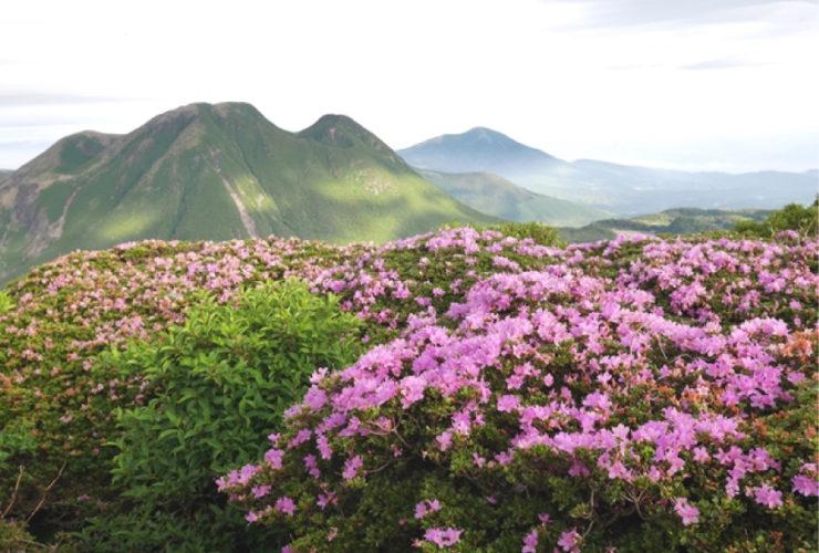 九重連山1,700m峰登頂シリーズ 三俣山