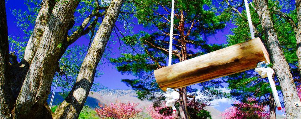 黒姫高原のんびりトレッキング