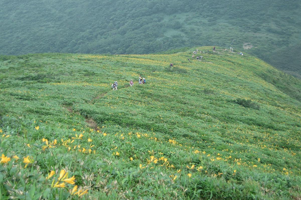 三倉山々開き