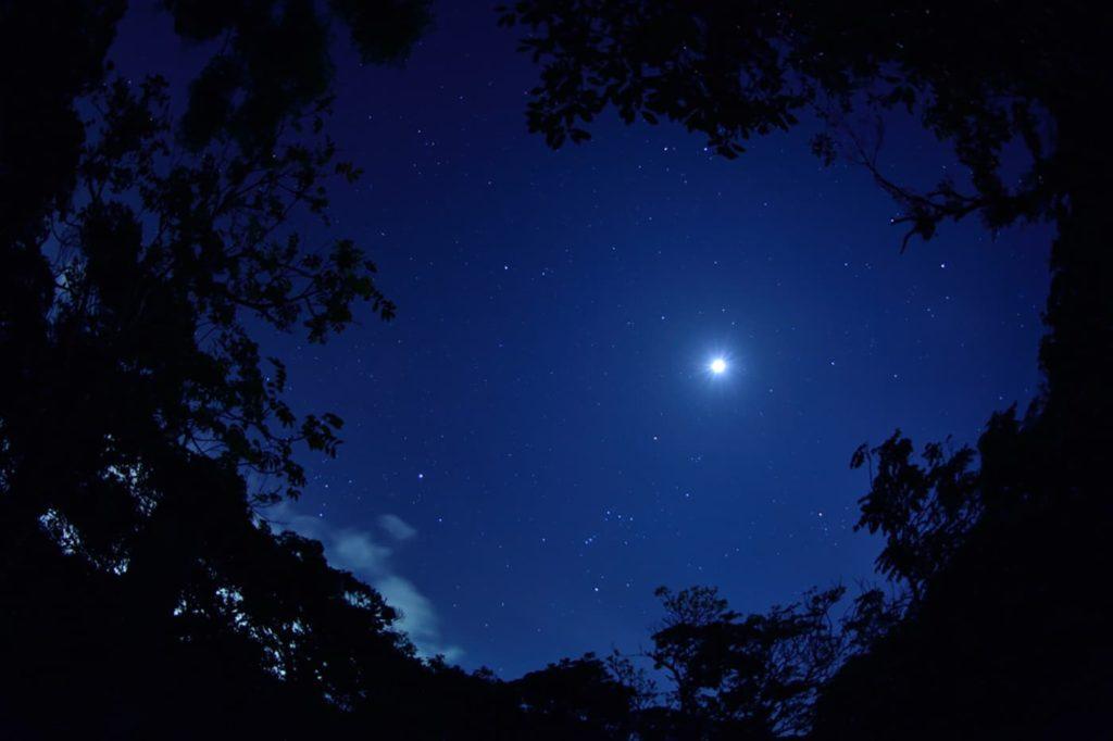 南の島の星まつり2019 | 沖縄県