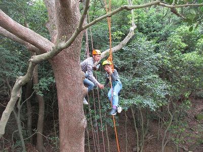 ツリーイング体験【甲山森林公園でロープ木登り!】| 兵庫県