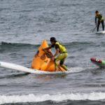 【エントリー締め切り7月30日!】東郷湖はわいSUPフェスティバル 2019 - SUP - サーフィン