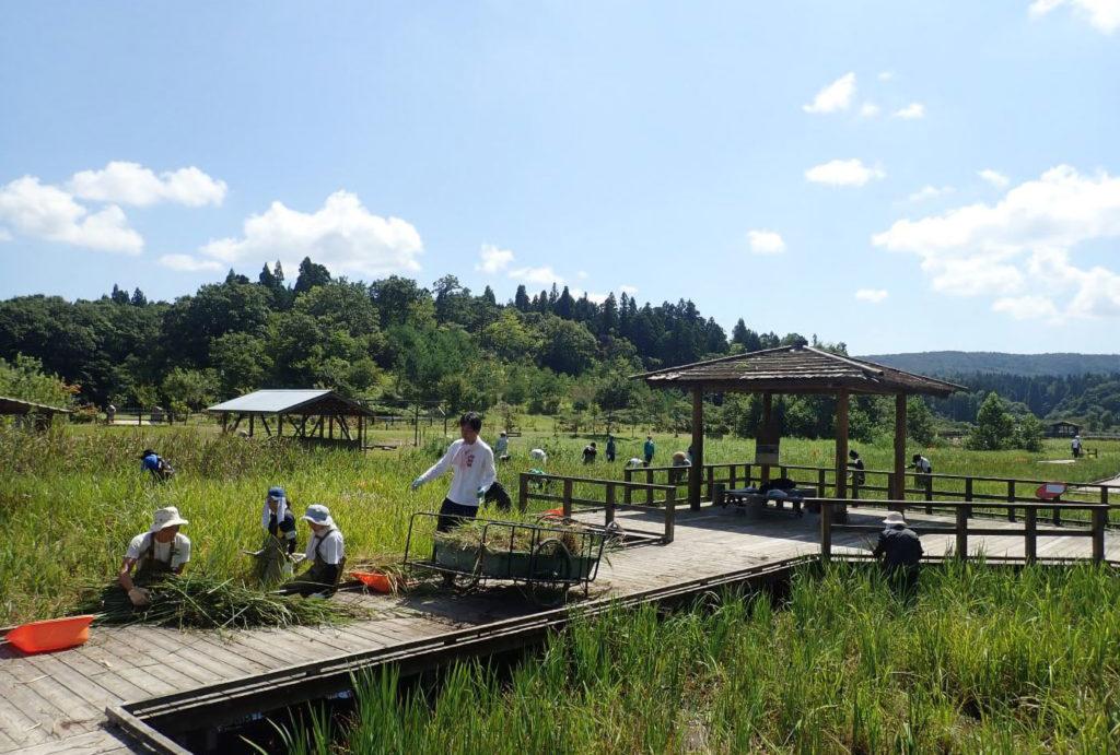 森づくり活動2019 | 新潟県