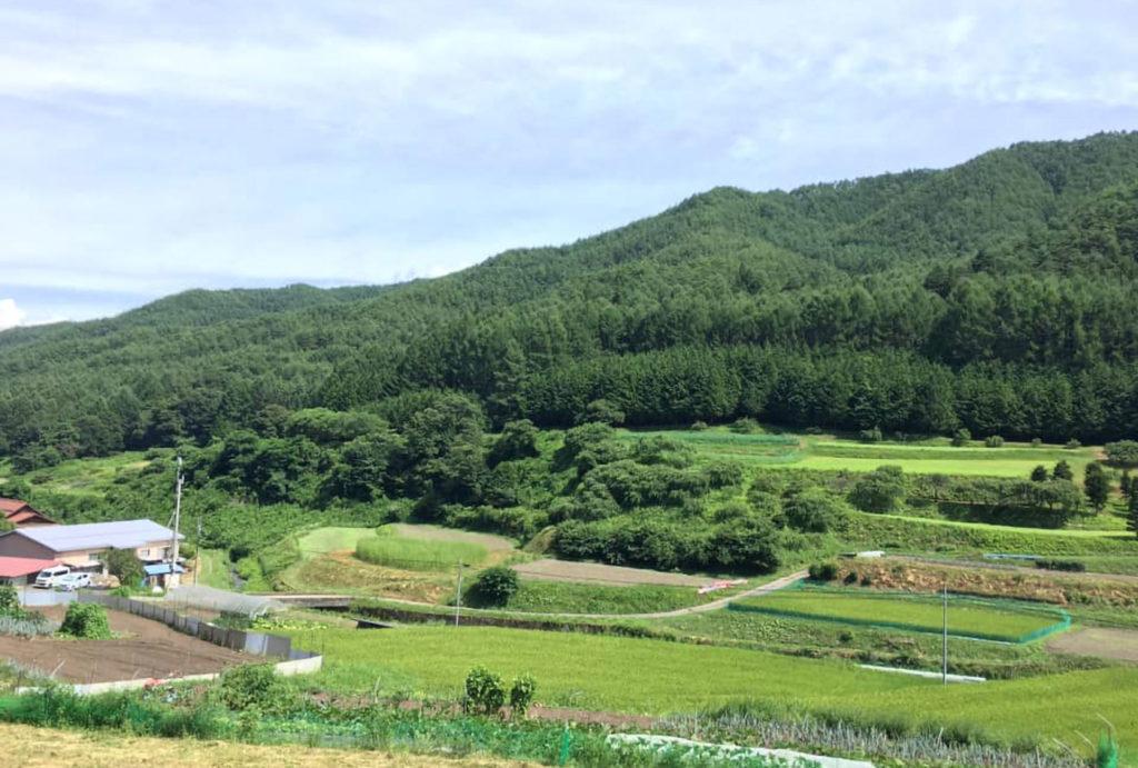 たのめの里フォトロゲイニング大会   長野県
