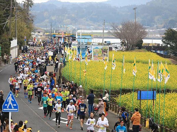 いぶすき菜の花マラソン | 鹿児島県