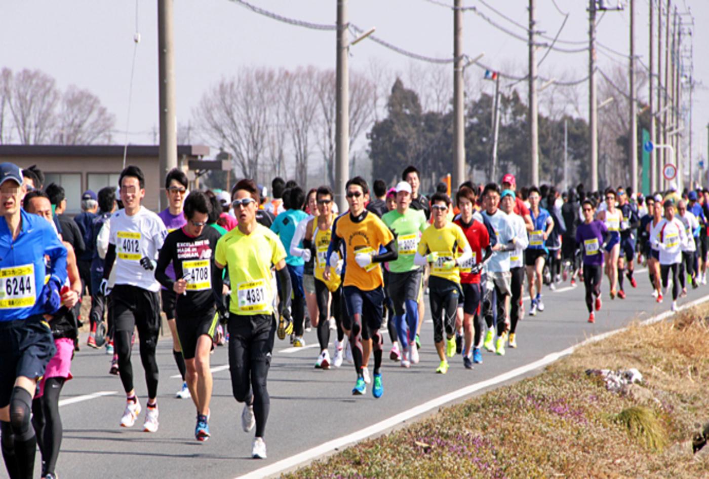 鴻巣パンジーマラソン   埼玉県