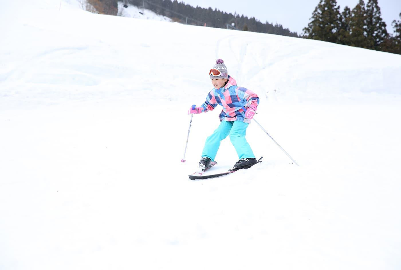 水上高原スキーリゾート みなかみドッグスポーツフェスタ | 群馬県