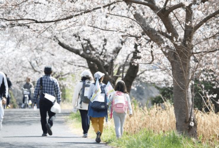 さいたマーチ〜見沼ツーデーウオーク〜 | 埼玉県