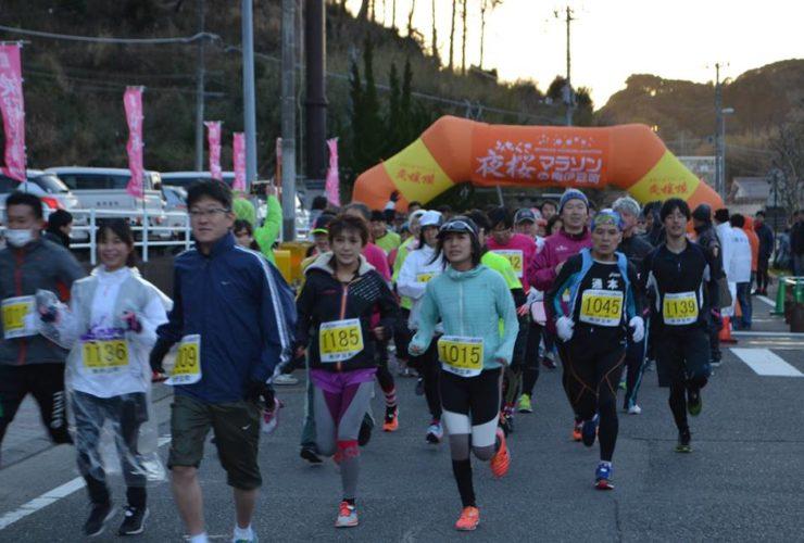 みちくさ夜桜マラソン in 南伊豆町   静岡県