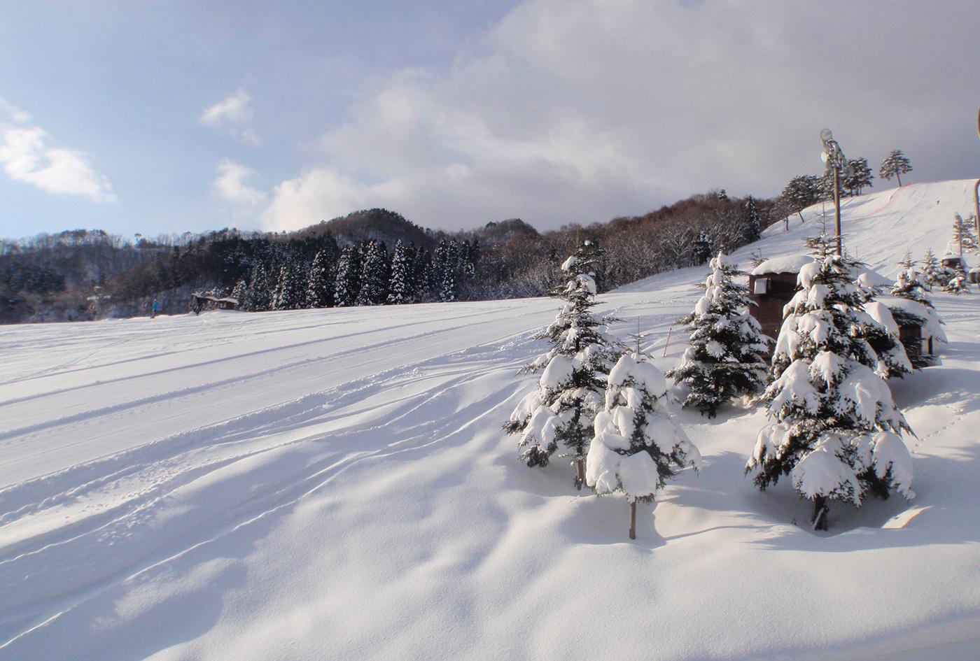 兵庫県スノーボード技術選手権大会 | 兵庫県