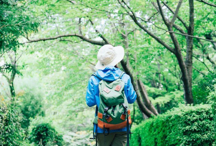 【山ガールカレッジ】初心者向け登山教室 | 東京都