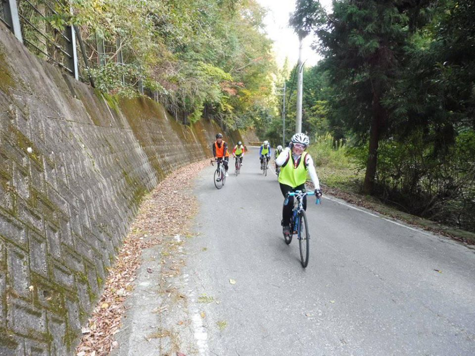 わかやまサイクリングフェスタ | 和歌山県