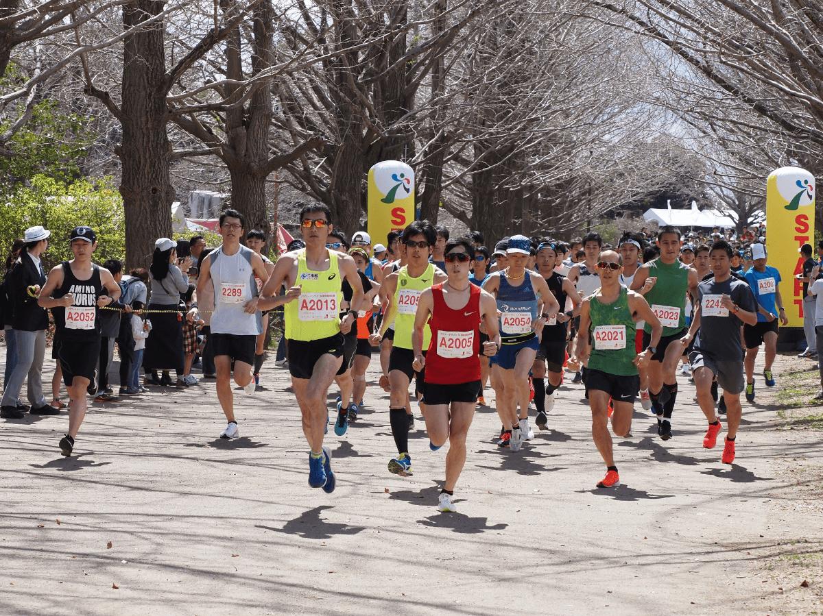 フラワーマラソンin国営昭和記念公園   東京都