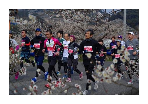 南紀田辺UMEロードマラソン | 和歌山県