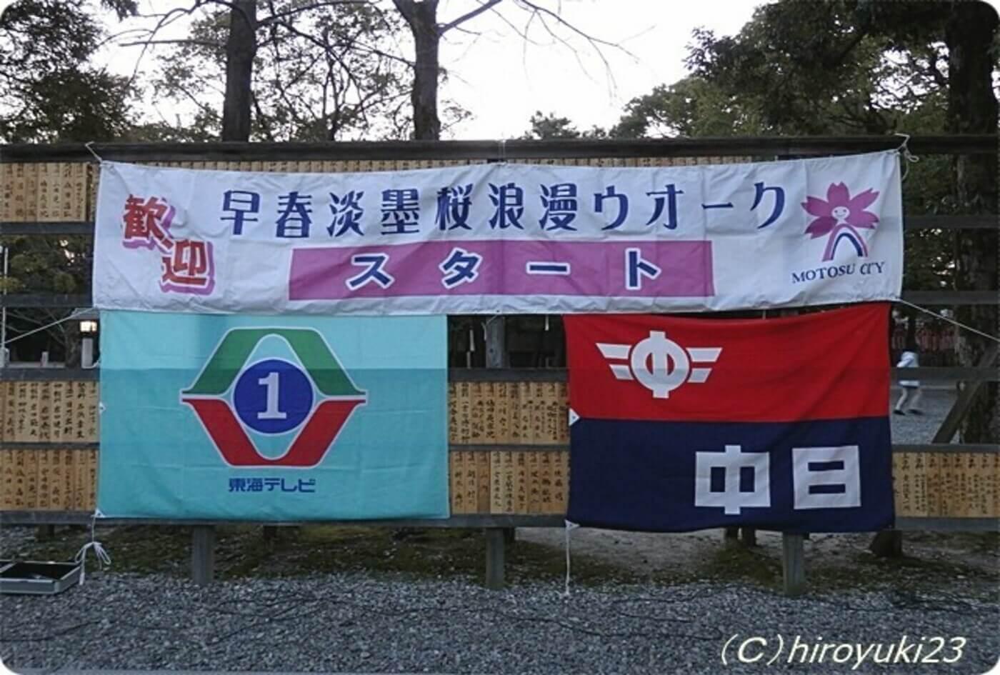 早春淡墨桜浪漫ウォーク | 岐阜県
