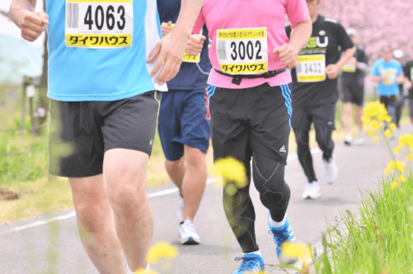 おやま思川ざくらマラソン大会 | 栃木県