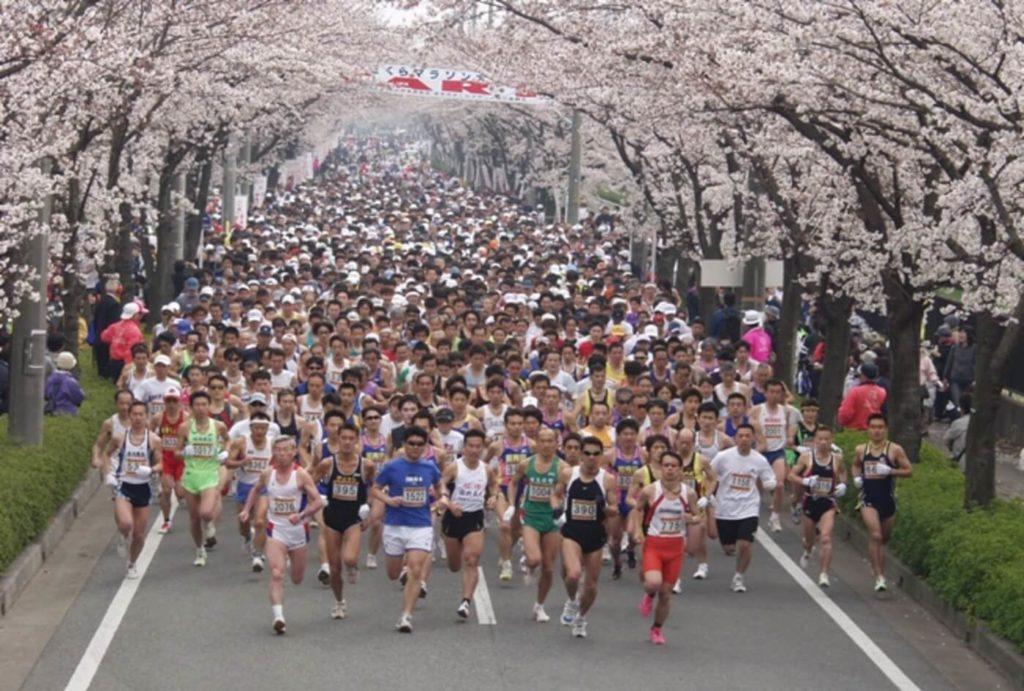 幸手市さくらマラソン大会 | 埼玉(幸手総合公園陸上グラウンド)