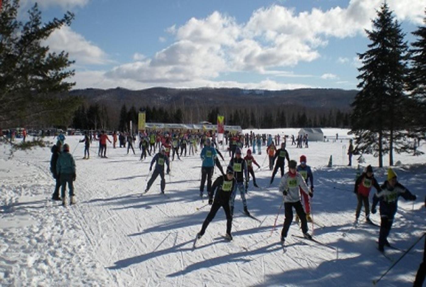 滝野公園歩くスキー大会/滝野公園クロスカントリースキー記録会 | 北海道