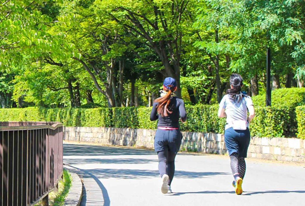 令和マラソン | 愛知県(庄内緑地公園内)