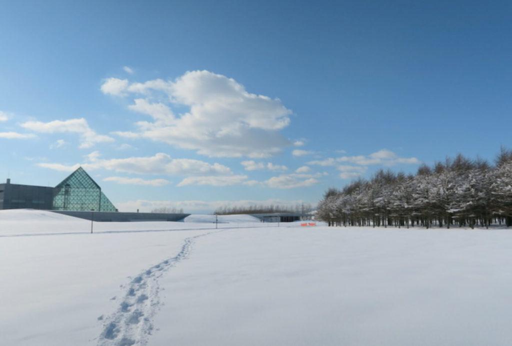 公園スタッフと歩く冬芽観察会 | 北海道(モエレ沼公園)