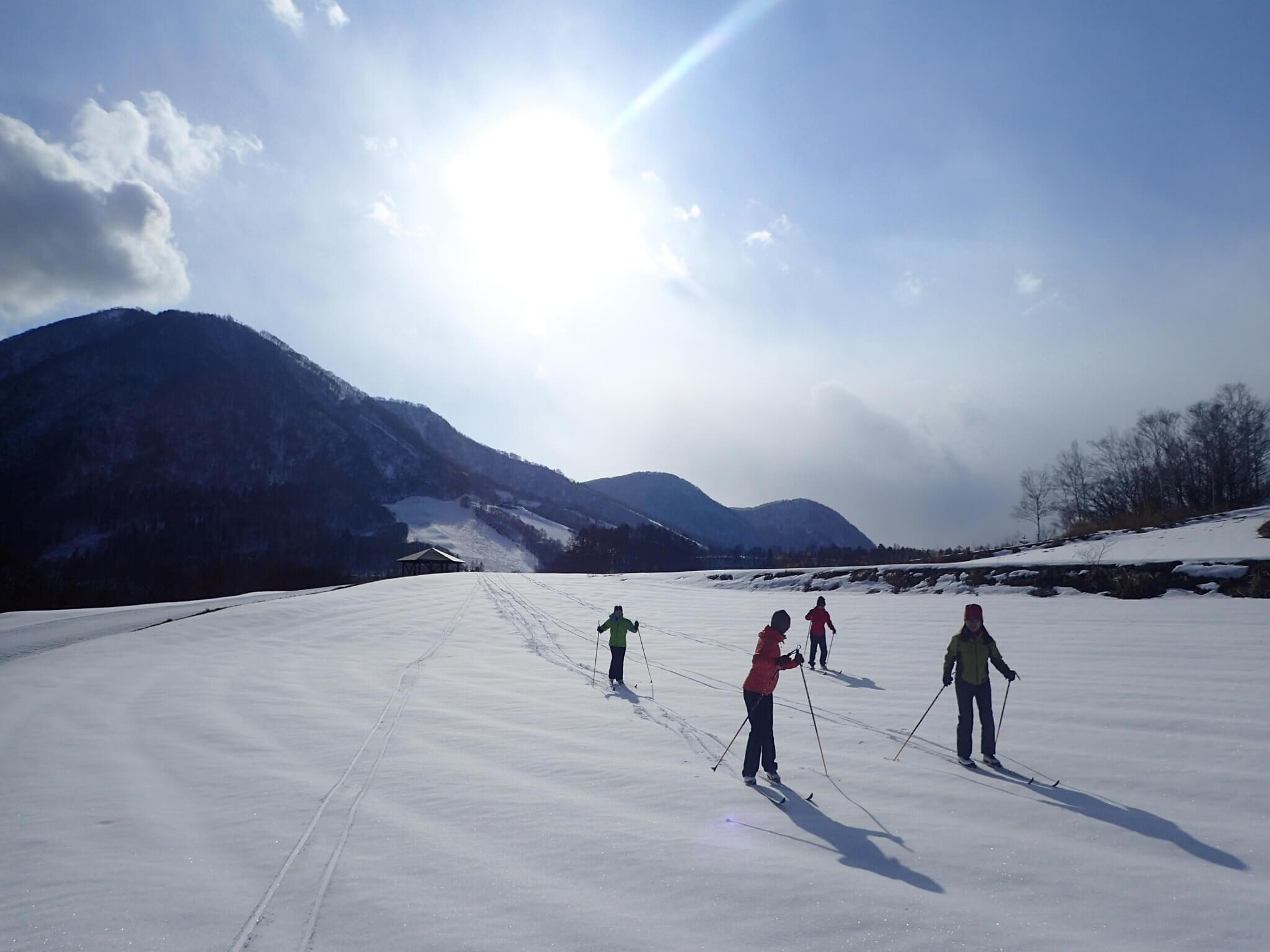 Forest Ski Trail for Runner | 長野県(スポーハイムアルプ)