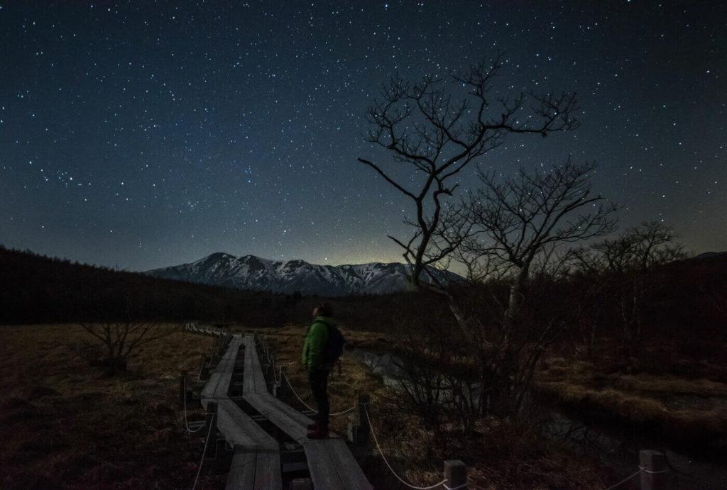 星夜の森歩き   栃木(那須平成の森)