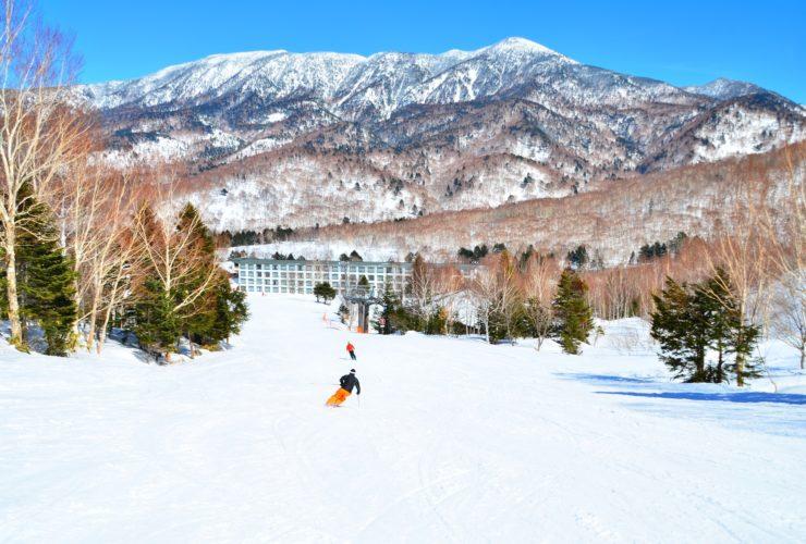 越後FUNスノートレイル | 新潟県(国営越後丘陵公園)