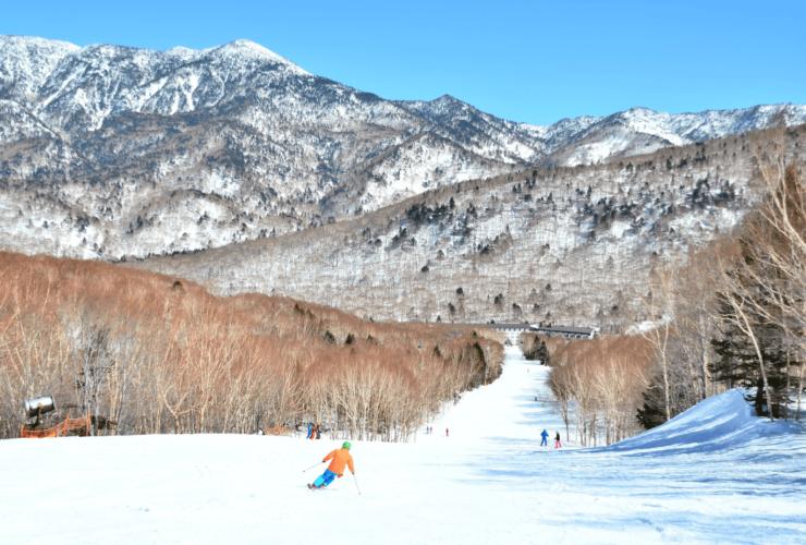八海山麓マスターズスキー大会 | 新潟県(八海山麓スキー場)