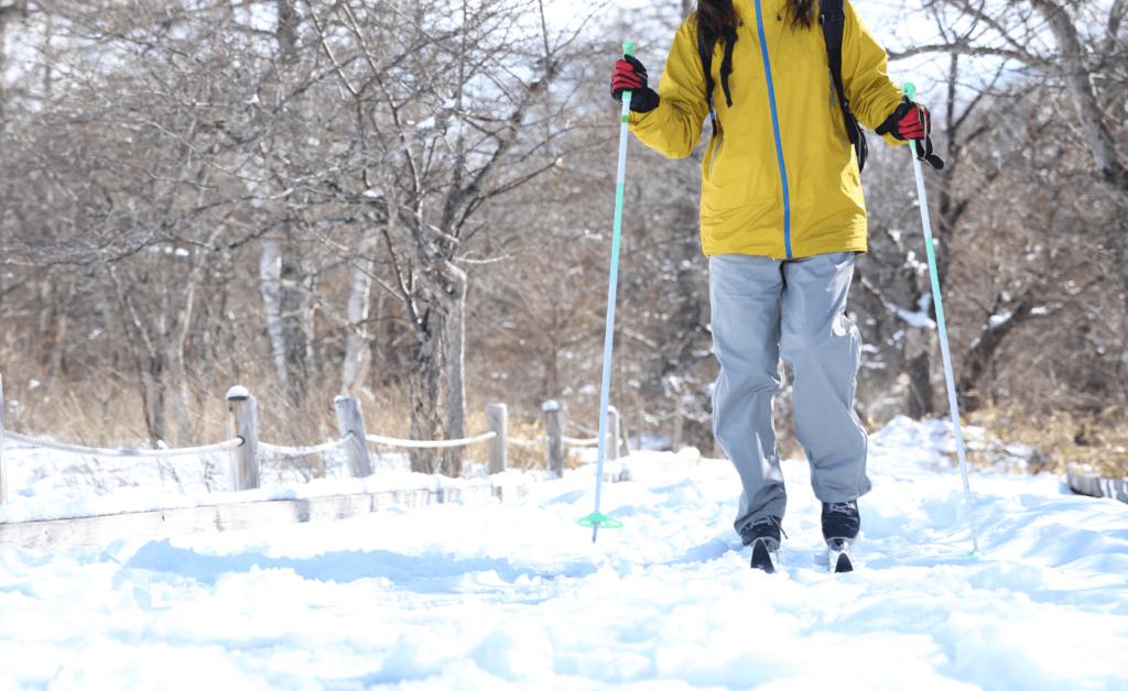 道民・札幌市民歩くスキーの集い | 北海道(滝野スノーワールドつどいの森)
