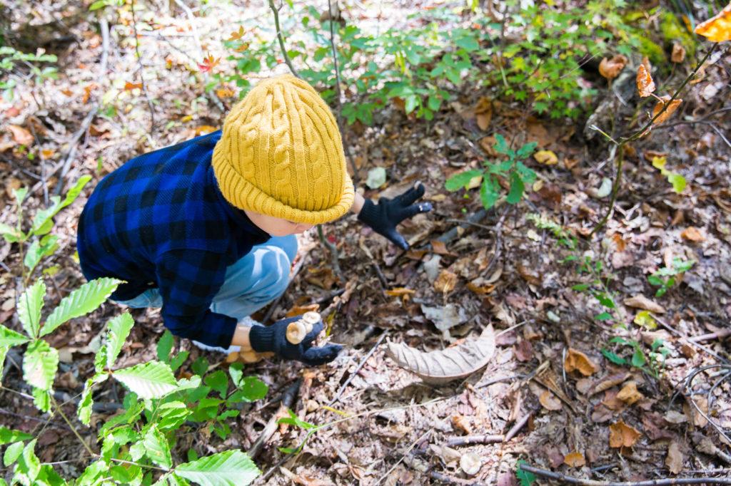 森っこレンジャー「基地づくりマスターになろう」| 千葉県
