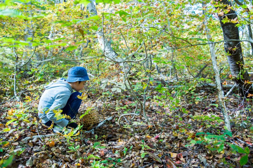 子どもチャレンジキャンプ | 千葉県