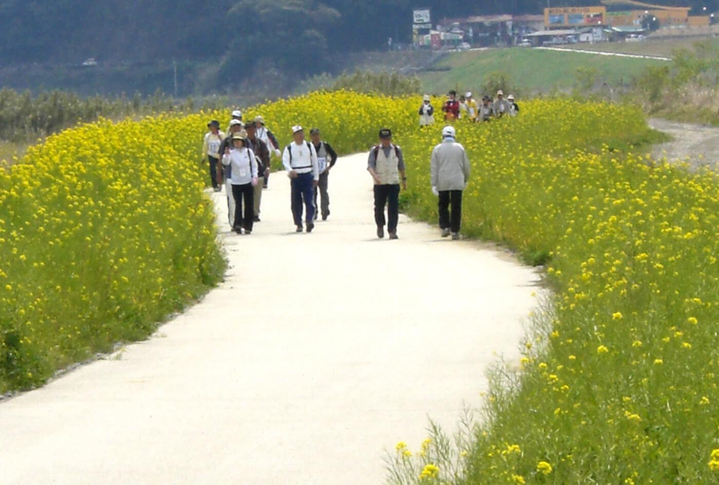 四万十川リバーサイドフルウォーク | 高知(四万十市民スポーツセンター)