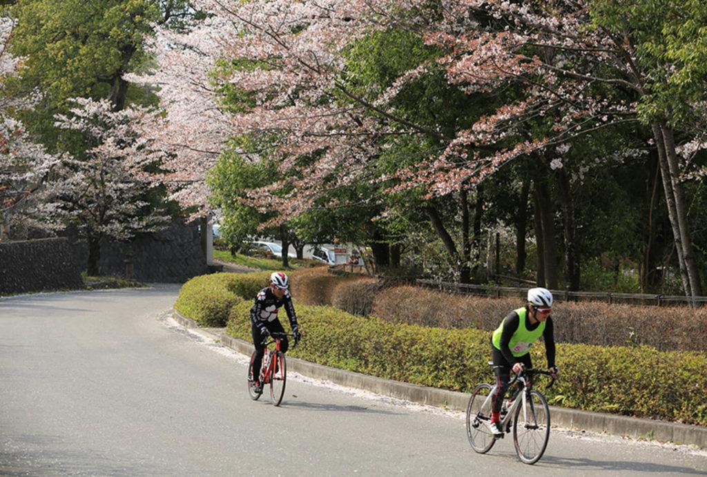 桃と桜のサイクリング | 山梨(中央市農村公園)