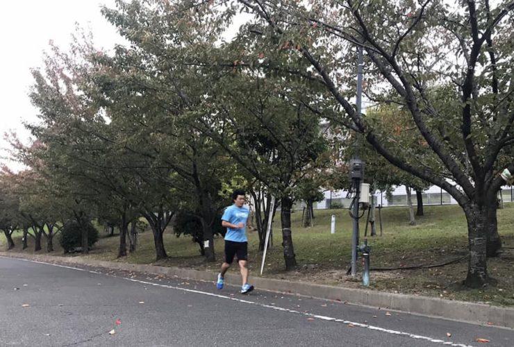交野マラソン | 大阪(交野市立総合体育施設)