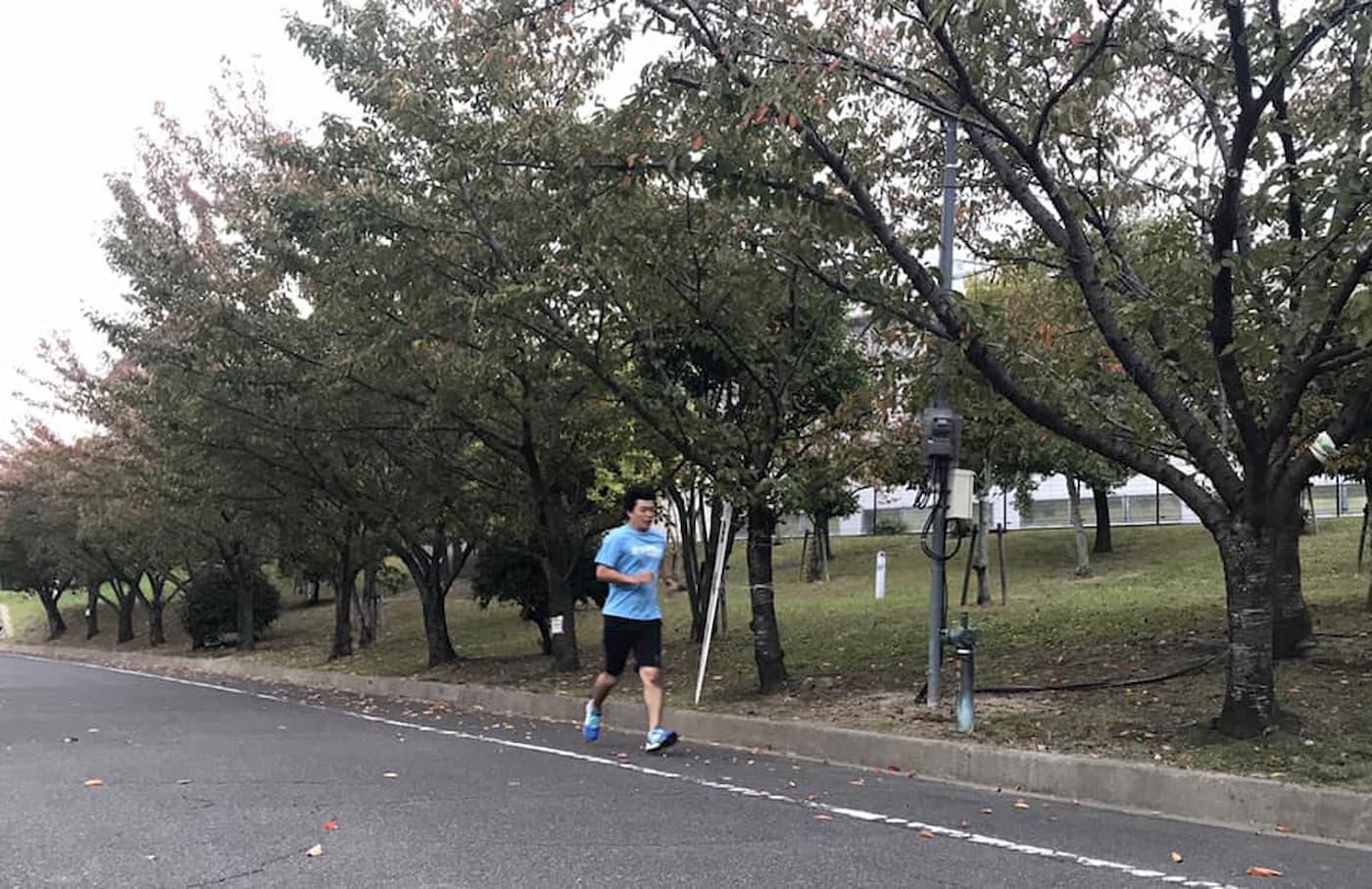 交野マラソン   大阪(交野市立総合体育施設)
