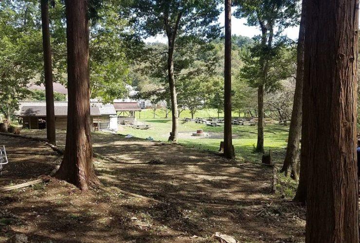 レンジャー大冒険キャンプ | 千葉(君津亀山少年自然の家)