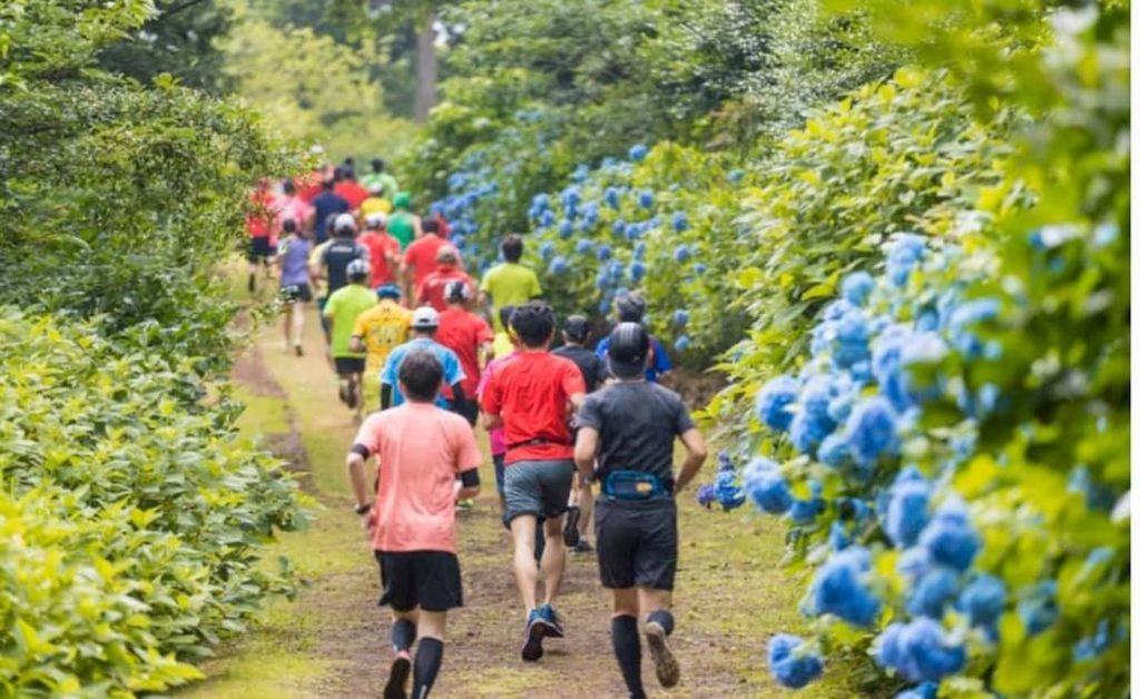 伊豆稲取キンメマラソン | 静岡(クロスカントリー・稲取文化公園)