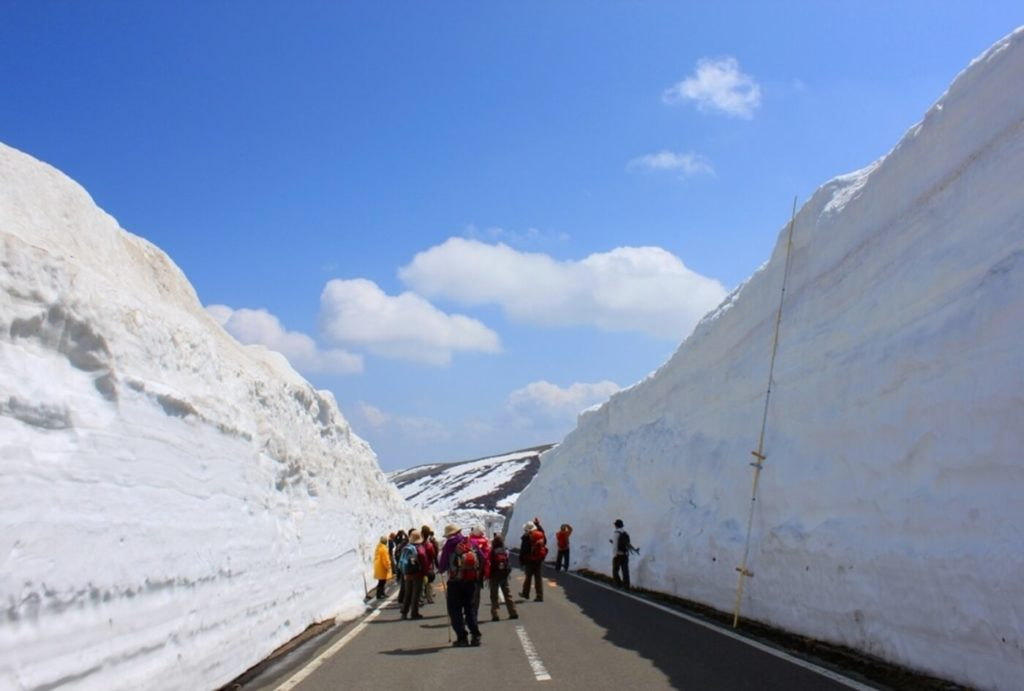 雪の回廊ウォーキング | 長野(山ノ内町志賀高原陽坂)