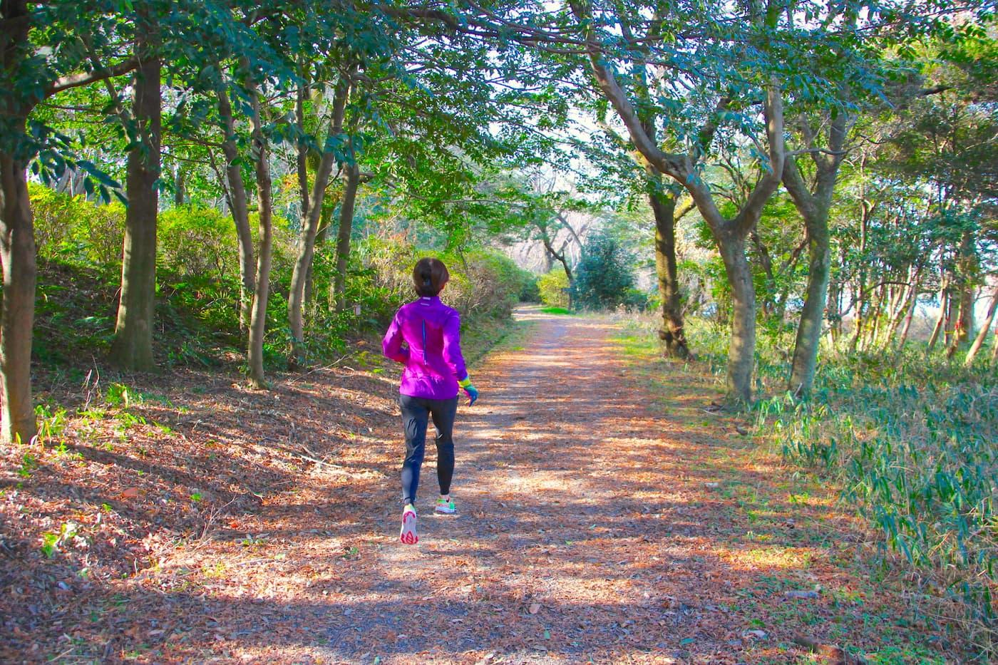 熊野古道中辺路マウンテンランレース | 和歌山県