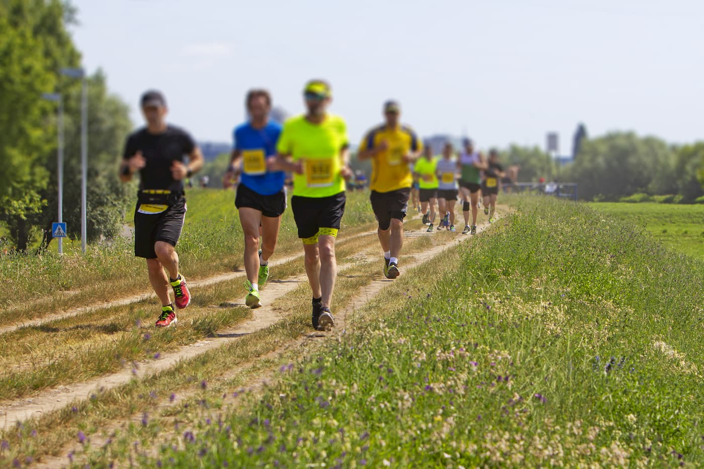 にこにこリレーマラソン 兼 全国ドラッグストア選手権inつま恋 | 静岡県