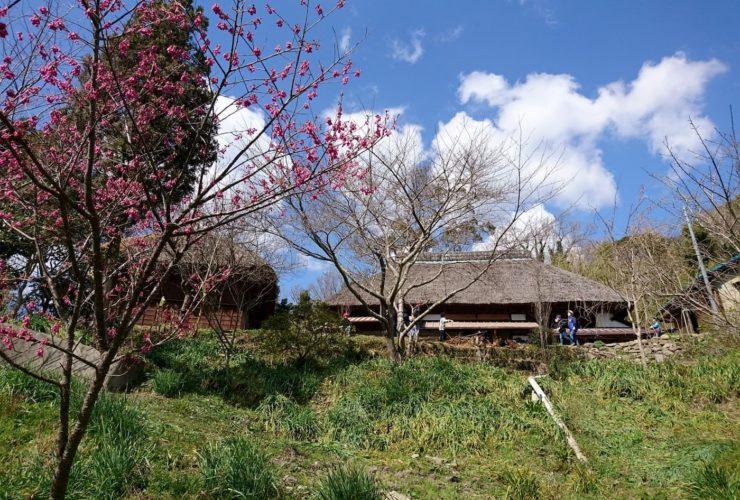 (小中学生)かやぶき屋根の古民家に泊まろう!【2泊3日】 | 千葉(古民家ろくすけ)