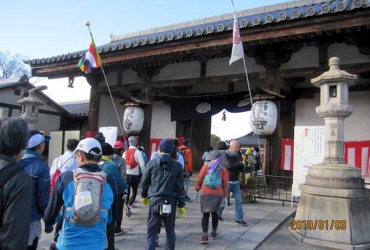 桜めぐりマラニック 2020 | 京都(鴨川葵公園)