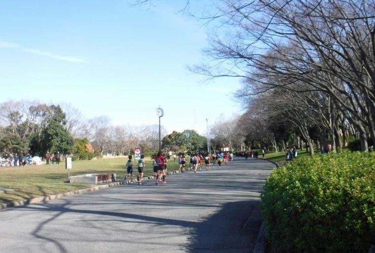 企業対抗リレーマラソンフェス | 大阪(大泉緑地)