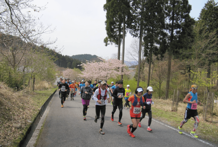 兵庫波賀トレイルランニング | 兵庫(フォレストステーション波賀)