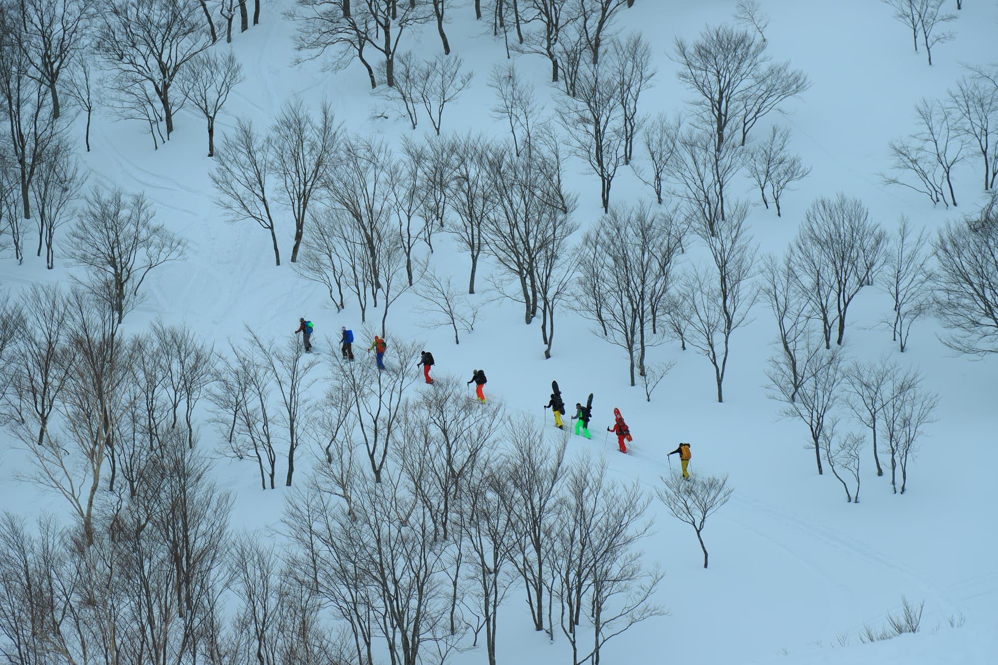 第1回 鹿島槍スーパーバーティカルレース/長野(HAKUBA VALLEY 鹿島槍スキー場)